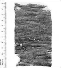 «Πάπυρος με ελληνική κατάρα 1.700 ετών!» της Έφης Ρουμελιώτη