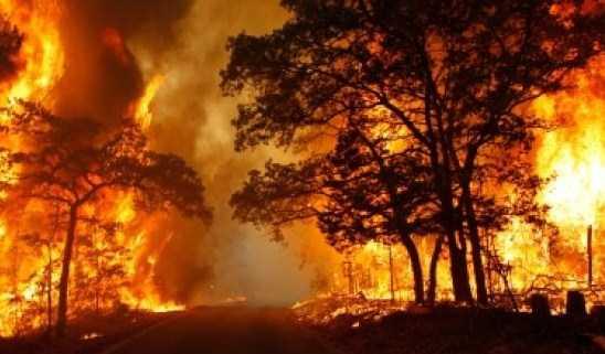 Θεσσαλονίκη: Σύσκεψη της Πολιτικής Προστασίας για την πρόληψη δασικών πυρκαγιών