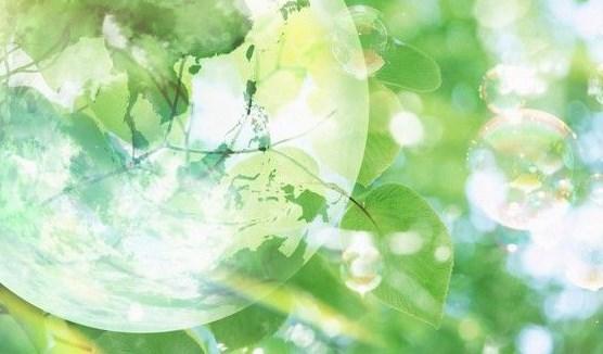 Παγκόσμια Ημέρα Περιβάλλοντος 2014