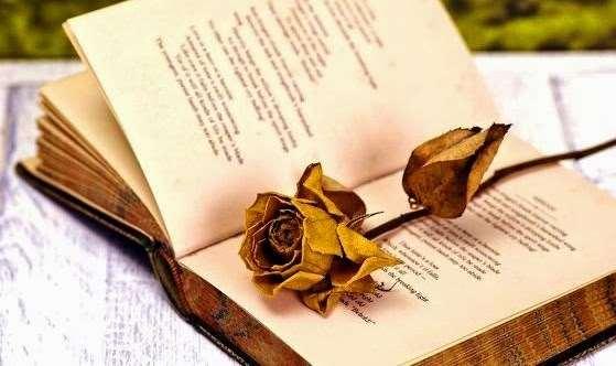 «Η θλίψη της ποίησης» της Γιώτας Ιωακειμίδου