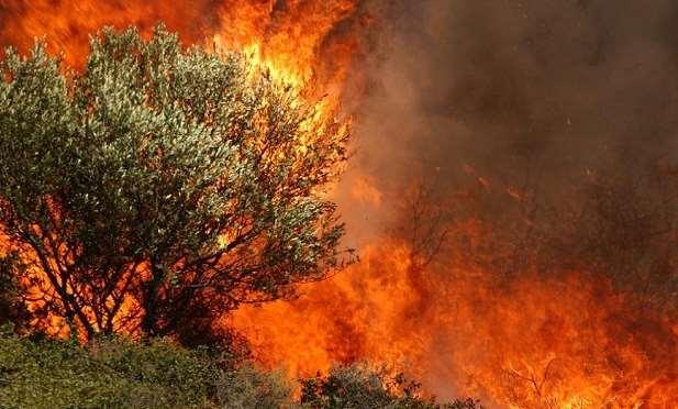 Μέτρα προστασίας όταν η φωτιά πλησιάζει σε σπίτια