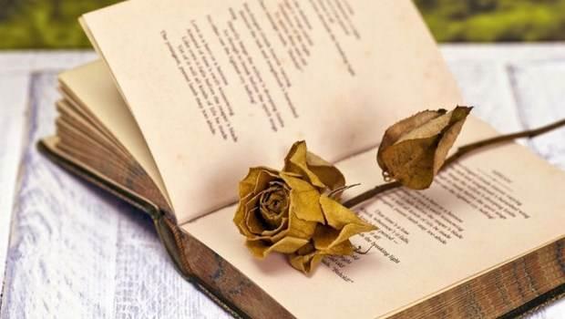 Ο δεκαπενταύγουστος μέσα από την ποίηση