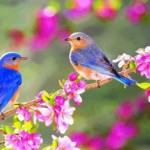 «Ο Μάρτης ο πεντάγνωμος»  της Γιώτας Ιωακειμίδου