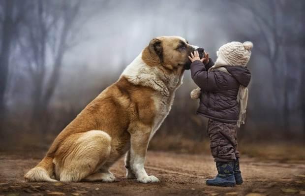 Το δίπολο της σχέσης μας με τα ζώα