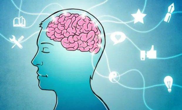 «Οι διαφορετικοί τρόποι πρόσληψης της γνώσης και η θεωρία της πολλαπλής νοημοσύνης» της Σίας Ανδρεοπούλου
