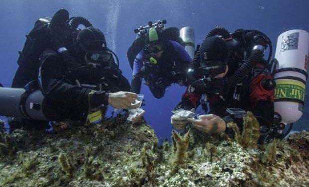 Υποβρύχια αρχαιολογική έρευνα στη Νότια Νάξο