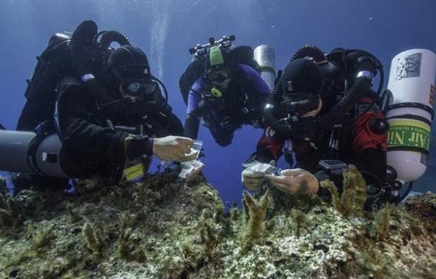 Ανασκαφή – Έρευνα στο Ναυάγιο των Αντικυθήρων