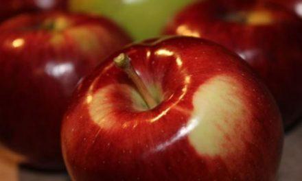 Η 21η Γιορτή Μήλου στην Αγιά Λάρισας