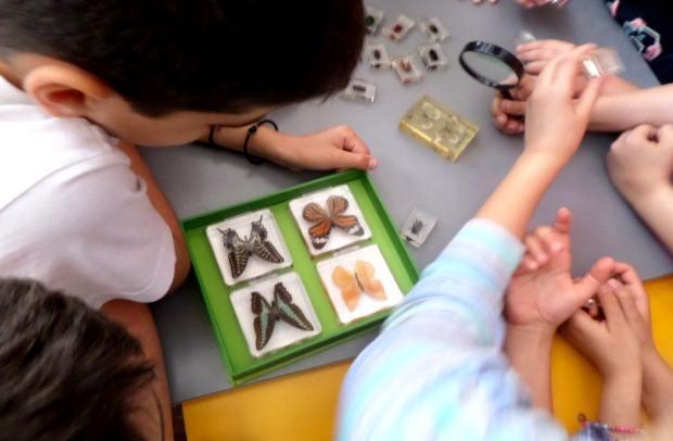Το εκπαιδευτικό πρόγραμμα «Μυρμηγκοφωλιά» στη Βιβλιοθήκη Χαριλάου