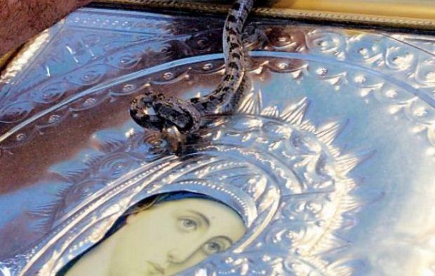 Τα φιδάκια της Παναγίας στο Μαρκόπουλο της Κεφαλονιάς