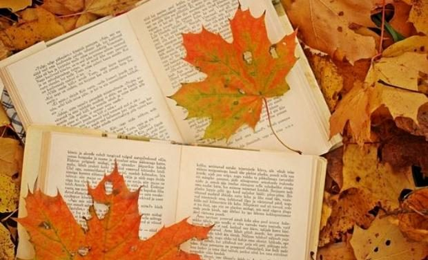 Ανακοινώθηκαν τα Κρατικά Βραβεία Λογοτεχνικής Μετάφρασης και τα Κρατικά Βραβεία Παιδικού Βιβλίου 2019