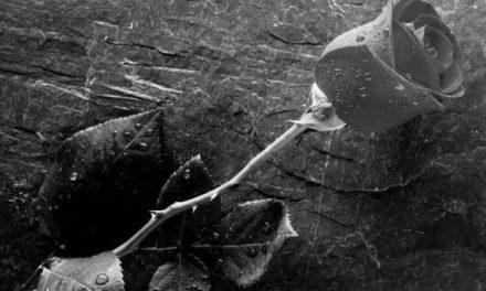 Π.Ε.Φ.: Φιλολογικά πένθη – Μνήμη Ηλία Σ. Σπυρόπουλου