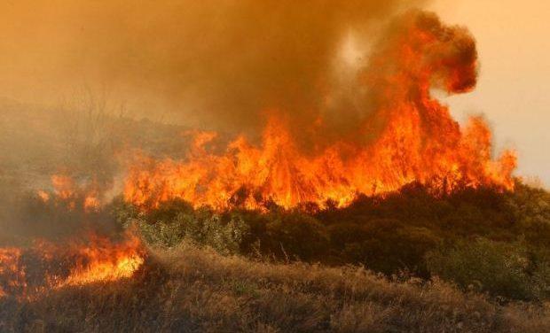 Ανακοίνωση της ΟΛΤΕΕ για τις πυρκαγιές στην Αττική