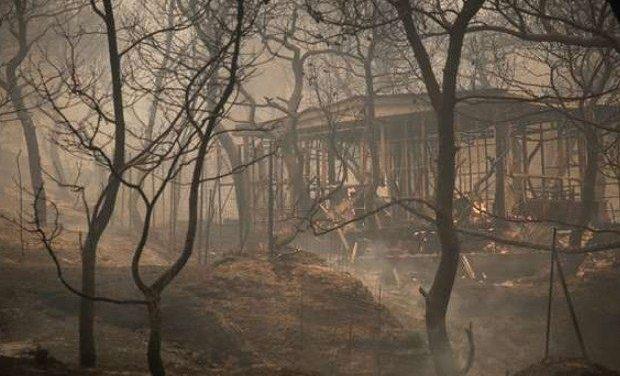 Ανακοίνωση της ΟΕΦΕ με αφορμή τις καταστροφικές πυρκαγιές