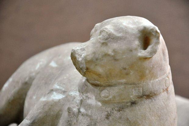 Το «Αθέατο Μουσείο» του ΕΑΜ υποδέχεται έναν εξηπλωμένο μικρό κύνα