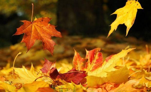 Από πού προέρχεται η λέξη… Σεπτέμβριος;
