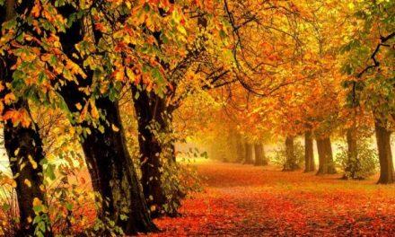 Οκτώβριος: Ποια είναι η προέλευση της λέξης;