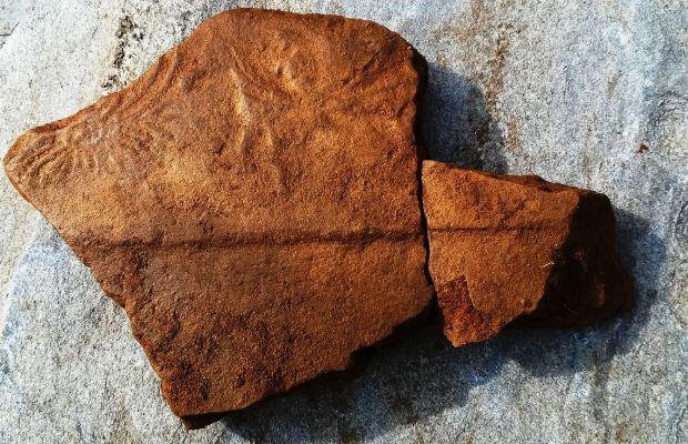 Σωστική ανασκαφική έρευνα στο Καψούρι Καφηρέα από την ΕΦΑ Εύβοιας