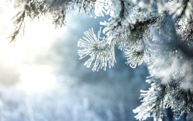 Πώς θα προστατευτείτε από το χιόνι και τον παγετό – Χρήσιμες συμβουλές