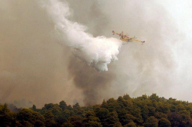 Ενημέρωση από τη ΓΓΠΠ για την εξέλιξη της δασικής πυρκαγιάς στα Ψαχνά Ευβοίας