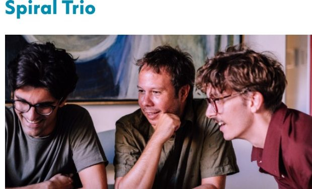Jazz Chronicles στο Φάρο του ΚΠΙΣΝ – Spiral Trio, Κυριακή 12/01