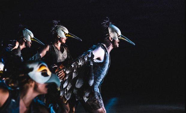 ΚΘΒΕ: Οι «Όρνιθες» του Αριστοφάνη επιστρέφουν στο Θέατρο Δάσους στη Θεσσαλονίκη