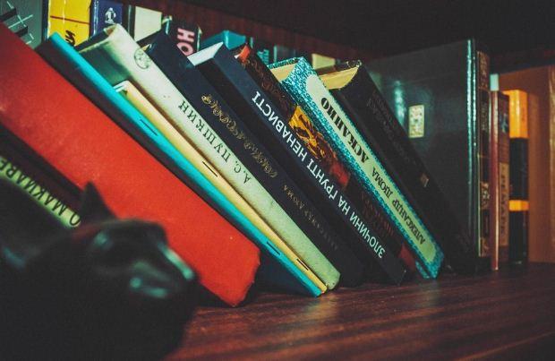 Διαγώνισμα στα Κείμενα Νεοελληνικής Λογοτεχνίας Γ' Γυμνασίου – Δ. Χατζής,Η τελευταία αρκούδα του Πίνδου