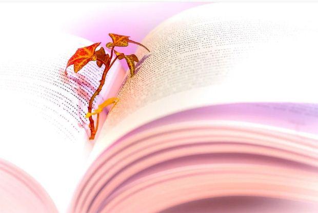 Παγκόσμια Ημέρα Ποίησης, 21 Μαρτίου 2021 – Κατεβάστε ελεύθερα 15 ποιητικές συλλογές