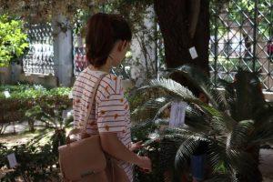 Τελευταίες ημέρες της έκθεσης της Ελένης Παπαϊωάννου «Ο Κήπος του Φιλολόγου» στο Επιγραφικό Μουσείο