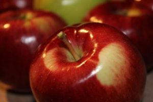 «Αγιώτικο Πανηγύρι και 22η Γιορτή Μήλου» στην Αγιά