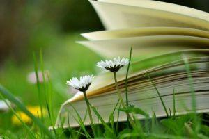 Βιβλίο: Ποια είναι η προέλευση της λέξης