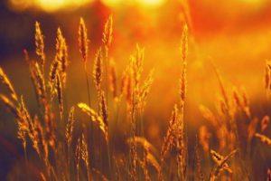 Θερινό ηλιοστάσιο: η πρώτη ημέρα του καλοκαιριού