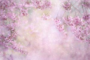 Καλή Ανάσταση και Καλό Πάσχα με υγεία και αγάπη!