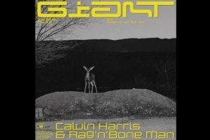 New single // Calvin Harris & Rag 'n' Bone Man - Giant