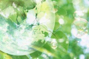 Παγκόσμια Ημέρα Περιβάλλοντος - 5 Ιουνίου