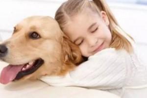 «Το δίπολο της σχέσης μας με τα ζώα» του Θανάση Πάνου