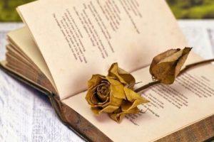 Ανακοινώθηκαν τα Κρατικά Βραβεία Λογοτεχνικής Μετάφρασης 2015