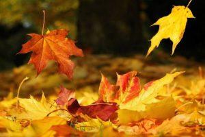 Σεπτέμβριος… από πού προέρχεται η λέξη;
