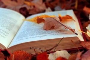 Ανακοινώθηκαν οι βραχείς κατάλογοι Κρατικών Βραβείων Λογοτεχνίας (2014)